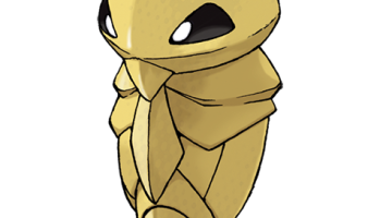 Pokemon Gif This Metapod Is Still Just Sitting Here Pokemon Blog
