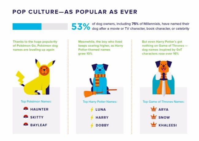 Pokemon GO Inspires Some Of The Most Popular Dog Names Of 2016