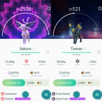 You can evolve flower-crowned Eevee and Shiny Eevee into all the available Eevee Evolutions in Pokémon GO