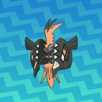 All qualified Ultra Final Online Competition participants can now get Shiny Tapu Koko in Pokémon Ultra Sun and Ultra Moon