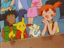 face_swap_brock_misty_pikachu_togepi