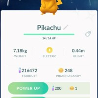 First Pokémon GO screenshot of successfully-caught surfing Shiny Pikachu during Pokémon GO Community Day