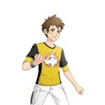 pokken_tournament_dx_battle_pack_dlc_artwork_for_new_avatar_item_Male_T_shirt_Aegislash