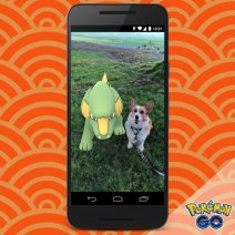 official_pokemon_go_screenshot_of_lunar_new_year_wild_Electrike_next_to_real_dog