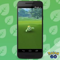 official_pokemon_go_screenshot_of_wild_hoenn_pokemon_cacnea