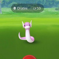 Shiny Dratini now officially available in Pokémon GO as part of the second Pokémon GO Community Day