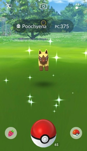 pokemon_go_screenshot_of_wild_shiny_poochyena