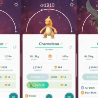Pokémon GO screenshots of Shiny Charmander, Shiny Charmeleon and Shiny Charizard with the Pokémon GO Community Day exclusive move Blast Burn
