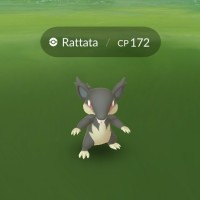 Alolan Rattata and Alolan Raticate can now be found and caught in Pokémon GO for the first time