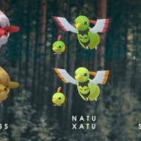 Shiny Natu, Shiny Xatu, Shiny Sunkern, Shiny Sunflora, Shiny Pineco and Shiny Forretress can now be found and caught in Pokémon GO