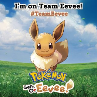 pokemon_lets_go_pikachu_and_lets_go_eevee_im_on_team_eevee