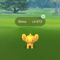 Shiny Shinx, Shiny Luxio and Shiny Luxray can now be found and caught in Pokémon GO