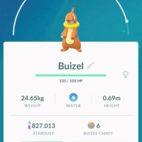 Shiny Buizel and Shiny Floatzel now available in Pokémon GO for the first time