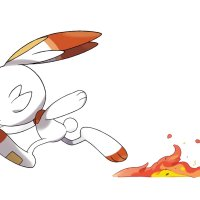Evolutions of Scorbunny leaked for Pokémon Sword and Shield