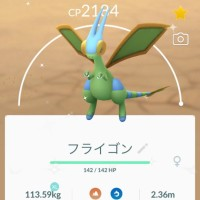 First Pokémon GO screenshot of successfully caught Shiny Flygon