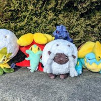 New plush for Wooloo, Drednaw, Corviknight, Gossifleur and Eldegoss arrive December 13 at the Pokémon Center