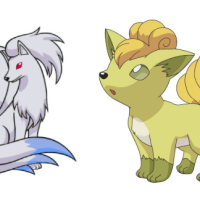 Shiny Vulpix and Shiny Ninetales will make their Pokémon GO debuts on February 22 if Vulpix gets the most votes for Pokémon GO Community Day