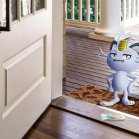 Pokémon Spotlight Hour with Alolan Meowth and double transfer Candy available in Pokémon GO tomorrow, September 28, at 6 p.m. localtime