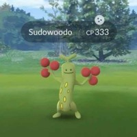 Shiny Sudowoodo now available in Pokémon GO for the first time
