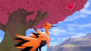galarian_zapdos_under_tree_pokemon_sword_and_shield