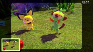 pichu_and_grookey_new_pokemon_snap