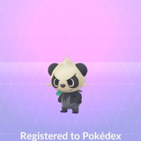 Pancham now available in Pokémon GO raids until May 17 at 8 p.m. local time